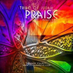 """""""Praise"""" MP3 Album"""
